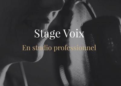 Stage voix en studio professionnel